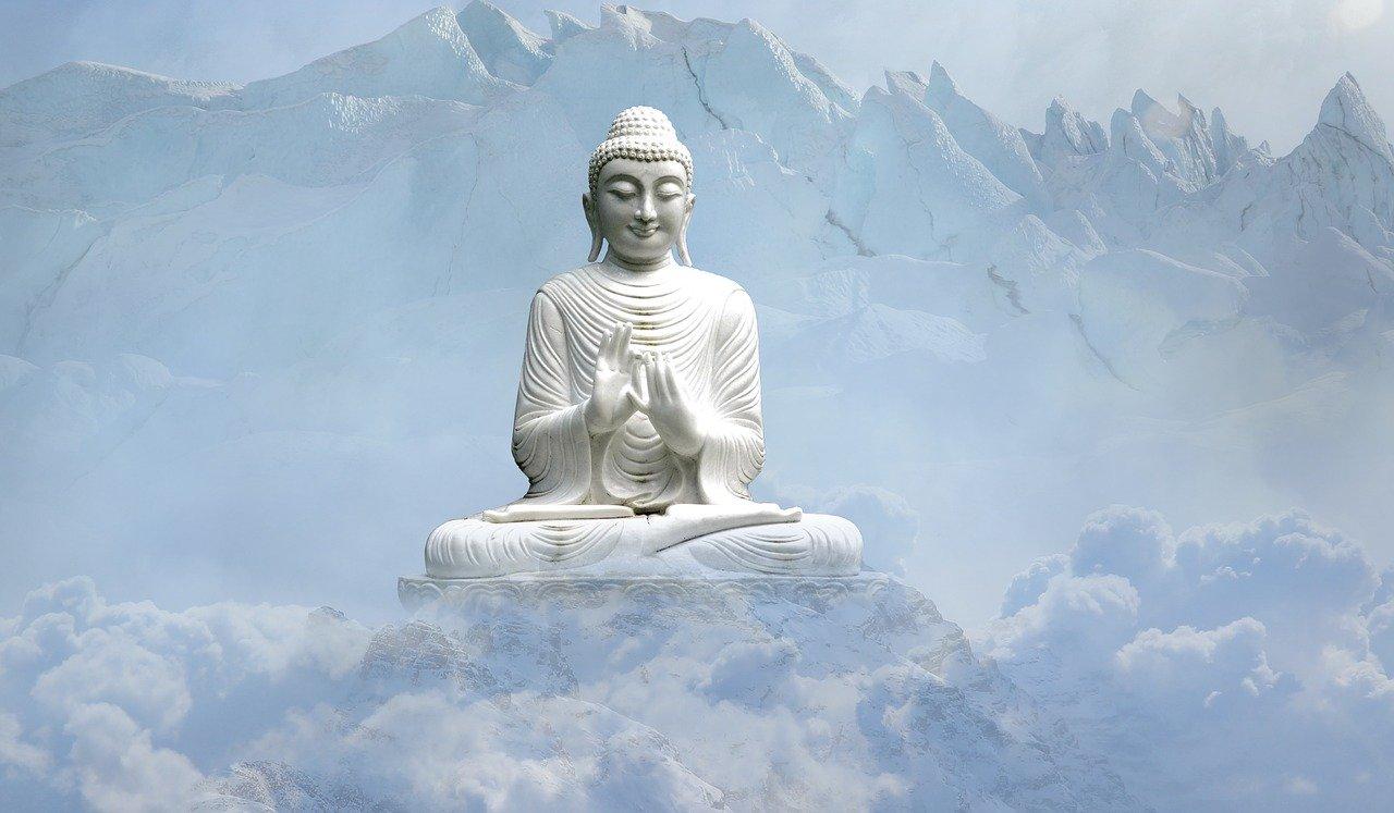 Mindfulness como estilo de vida (8 semanas en directo)